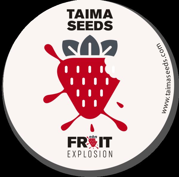 pegatina fruit explosion taima seeds