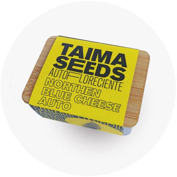 Northern Blue Cheese auto caja taima seeds